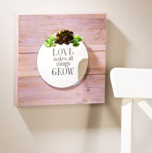Wood board garden succulent mirror