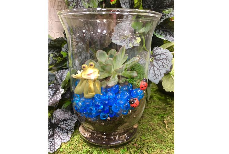 Succulent with frog & Terrarium Workshop @ Hazel Dell Location | Vancouver | Washington | United States