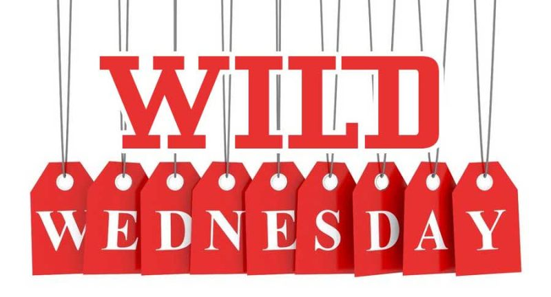 Wild Wednesday - Special Offer @ Hazel Dell Location | Vancouver | Washington | United States