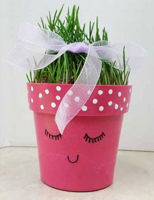 Wheatgrass decorated pot at Craft Warehouse