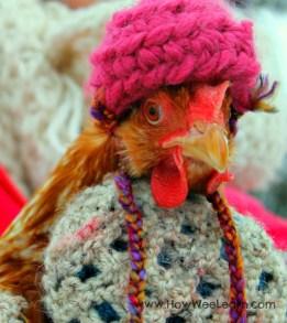 chicken-hat