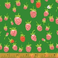 Heather Ross Briar Rose - Strawberry in green