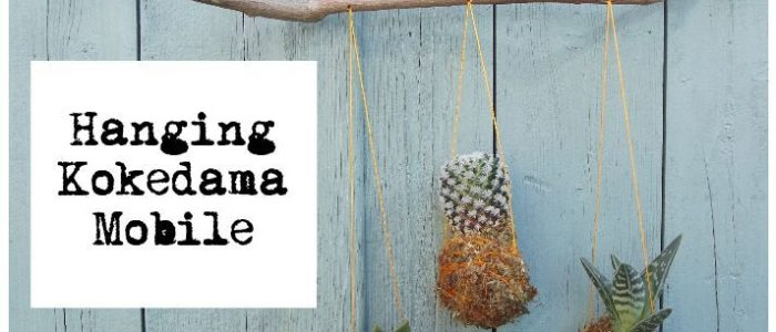 How to tutorial - Hanging Kokedama Mobile | Title