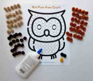 Pom Pom Owl craft supplies