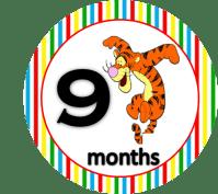 Tiger - 9 months