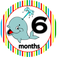 Whale - 6 months