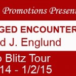 Camouflaged Encounters by David J. Englund @goddessfish #giveaway