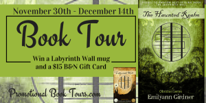 The Labyrinth Wall and the Haunted Realm by Emilyann Girdner #review