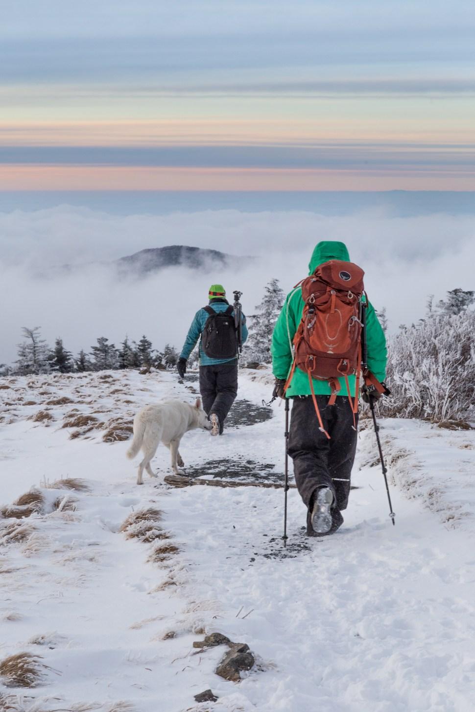 Snowy hike on Roan Mountain NC