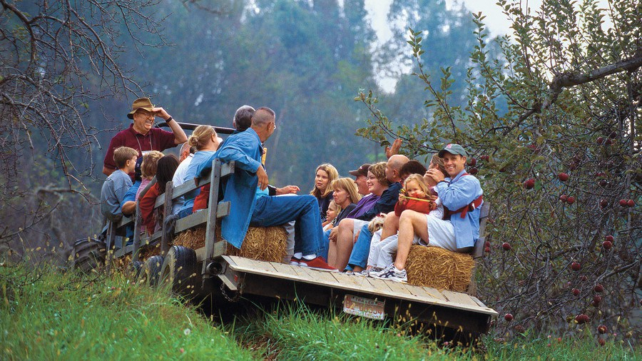 Storytelling hayride at the Orchard at Altapass