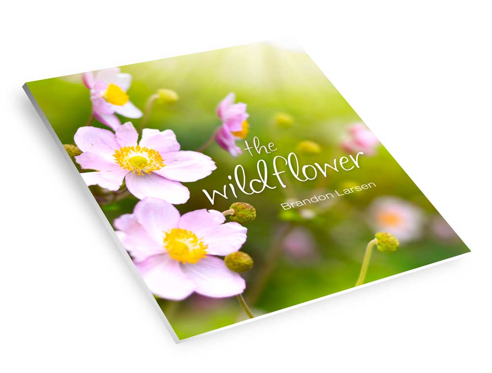 Tell It All Tuesday - Becoming the Crafty Wildflower