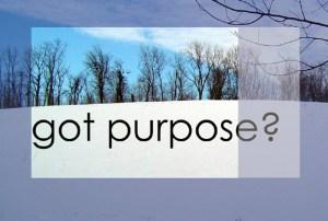 snow_purpose1
