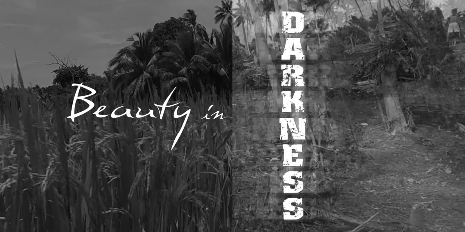 Beauty in Darkness