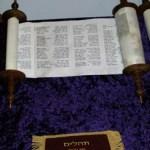 A Prosperity Gospel – Psalms 25:13-15