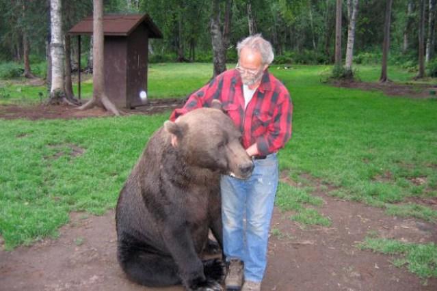 bear-may-20-1