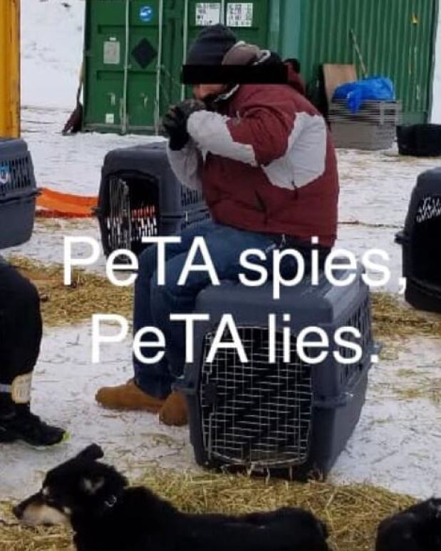 peta spies