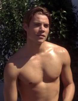 Josh Henderson played Austin, Edie's (Nicolette Sheridan) nephew.