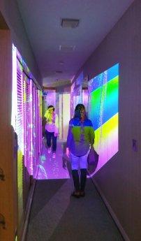 Projected art on the Fort Lauderdale waterfont tour. (Craig Davis/Craigslegz.com)