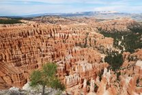 Bryce Canyon has the largest concentration of hoodoos in the world. (Craig Davis/Craigslegztravels.com)