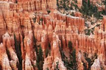 Thousands of colorful hoodoos create a unique and colorful spectacle at Bryce Canyon in Utah. (Craig Davis/Craigslegztravels.com)
