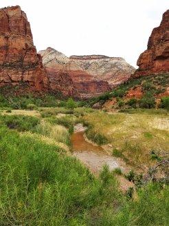 Zion Canyon is a visual smorgasboard of varying colors at Zion National Park in Utah. (Fran Davis/Craigslegztravels.com)
