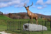 The Elk on the Trail is a World War I memorial on the Mohawk Trail in the Berkshires. (Craig Davis/CraigslegzTravels.com)