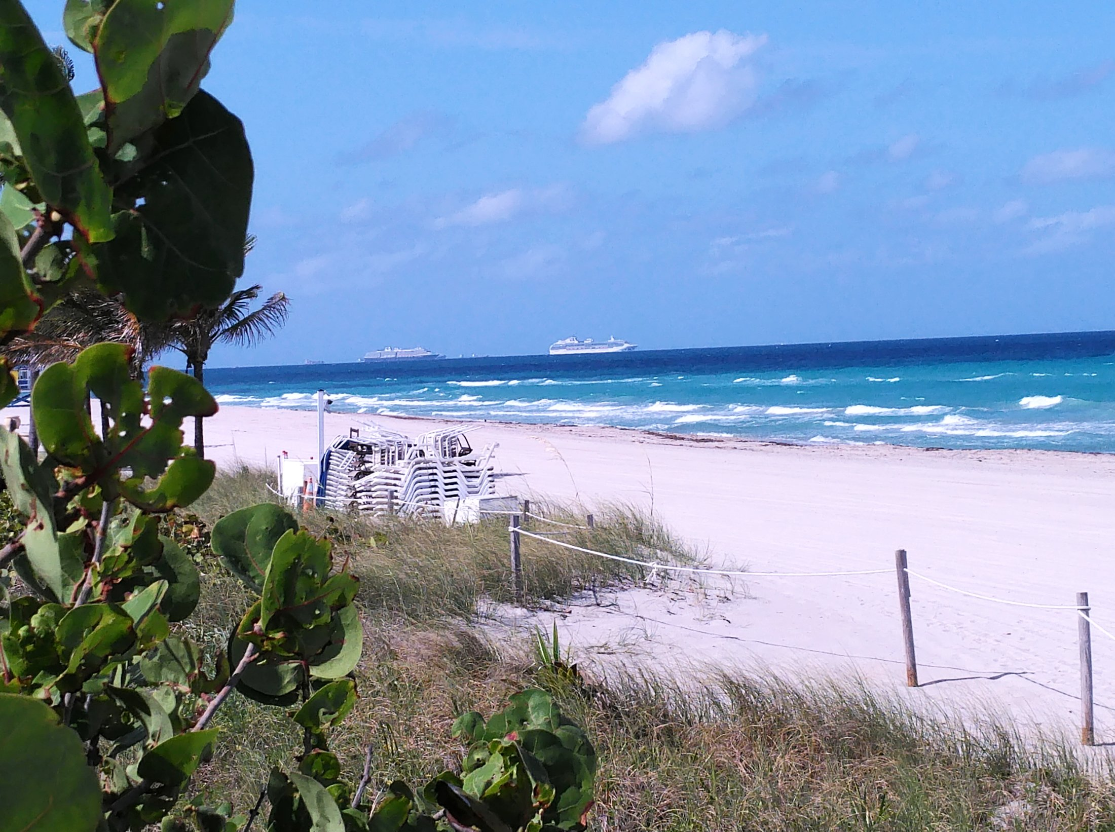 Cruise ships off Fort Lauderdale, but not bearing passengers, as cruise lines have suspended operations during the coronavirus pandemic. (Craig Davis/Craigslegztravels.com)