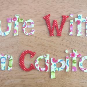 craisymissdaisy cute with fun capitals