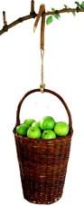 Äppelplockarkorg