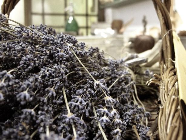 Torkad lavendel