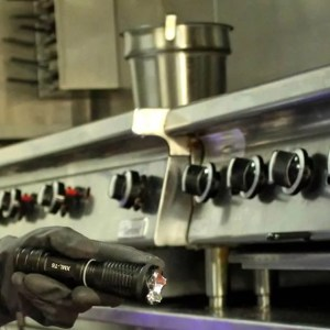 Restaurant-and-Food-Processing-Facility-Pest-Control-and-Extermination-Services