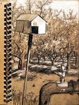 Nest box and water management apparutus in almon orchard