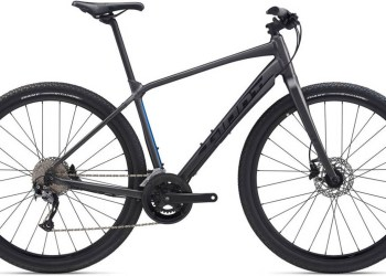 2020 Giant Toughroad Slr 2