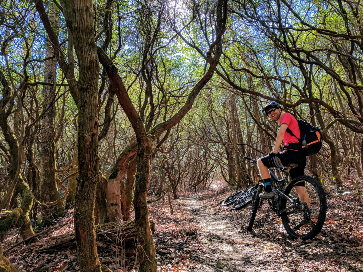 Red Wold MTB Tours