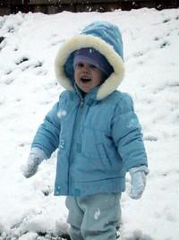 Snow_violet_3