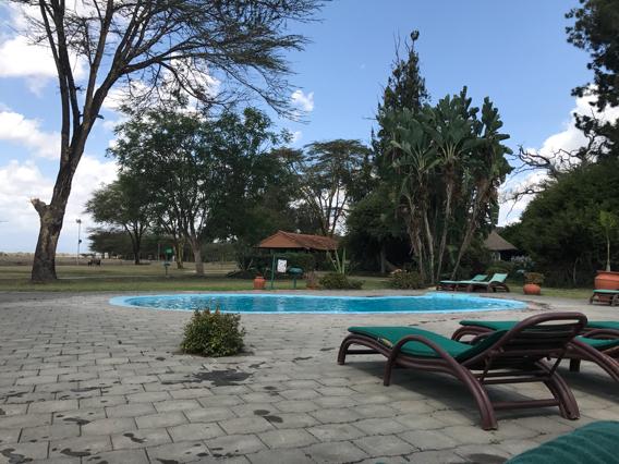 hôtel piscine au Kenya - Laikipia