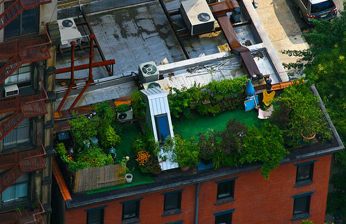 Elaborate penthouse roof-gardens of NYC / Boing Boing