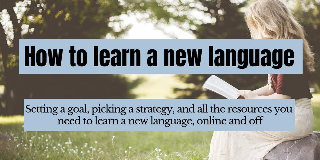 Language fluency online vs language training