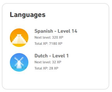 Duolingo review: all about levels