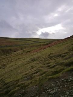 sodden hills