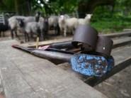 Shears at the ready!