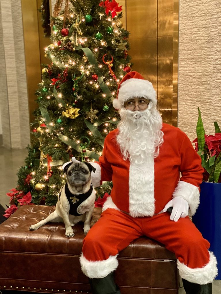 Pet Photos With Santa Paws