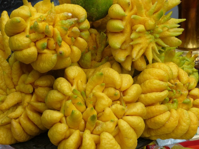 10 unusual fruits you've probably never tried before_buddhashand
