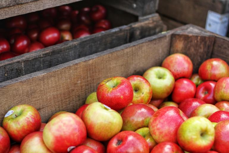 The best apples for eating fresh