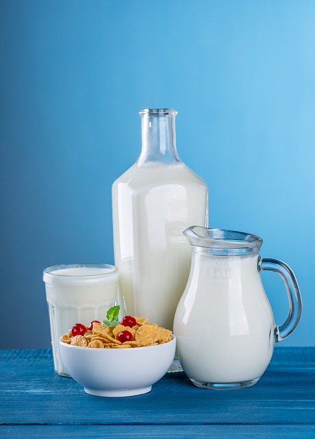 bcaa in dairy products