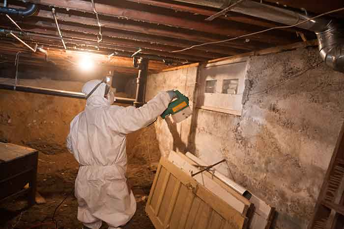 cleaning mold in crawl space