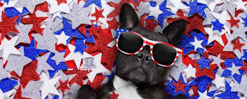 Weird and Funny Things you Need for Independence Day