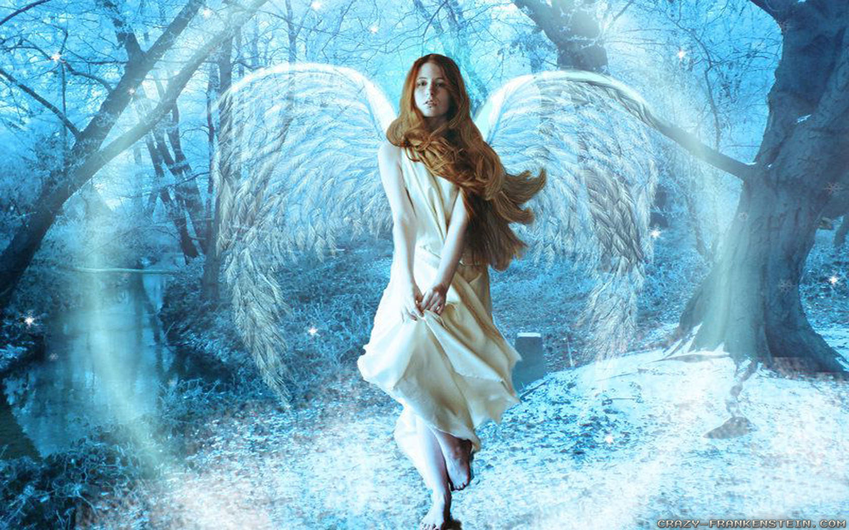 Christmas Angels Wallpapers Crazy Frankenstein