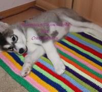 Мягкий коврик (лежак) для собаки своими руками