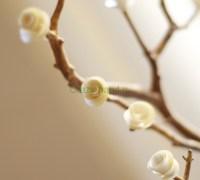 Дерево из бумажных роз своими руками